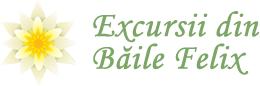 Excursii cu plecare din Baile Felix