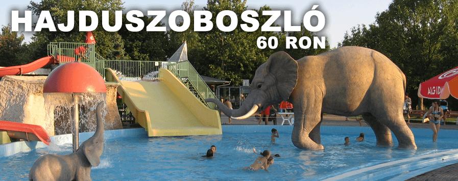 Excursie la Hajduszoboszlo