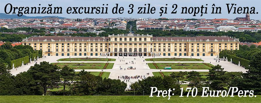 Excursie la Viena