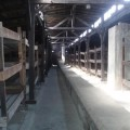 Auschwitz interior de un barracon