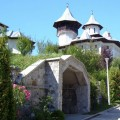 manastirea-crisan-vaca-(1)